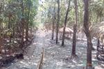 watu-sepur-bayat-visit-klaten-visitklaten.com